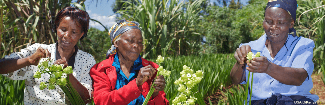 Sustainable Agriculture Depends on Women