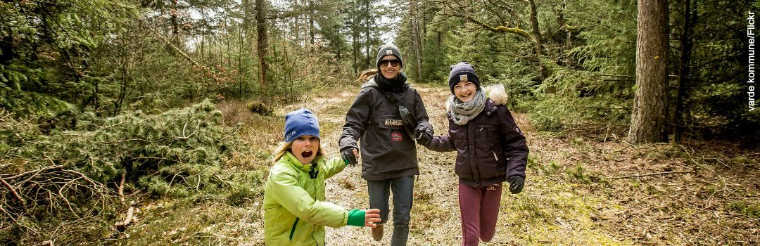 How Family Forests Can Fight Climate Change