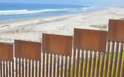 The Environmental Price of the Border Wall: Q&A with Dan Millis