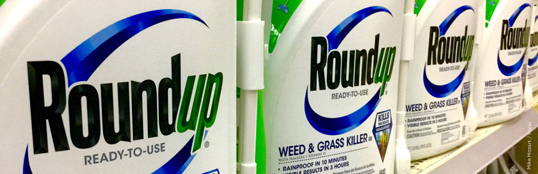 Rachel's Network Funds Archive Uncovering Monsanto Deception on Glyphosate