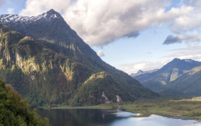 Rachel's Network Provides Grant to Tompkins Conservation for Rewilding in Southern Chile