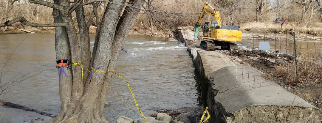 Q&A with Member Mary Bookwalter on Removing Dams in Indiana