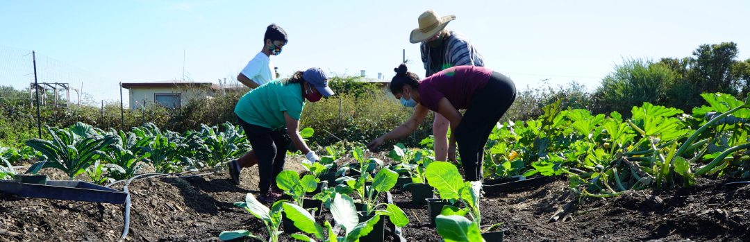 Rachel's Network Supports Community Food Hub in Richmond, CA